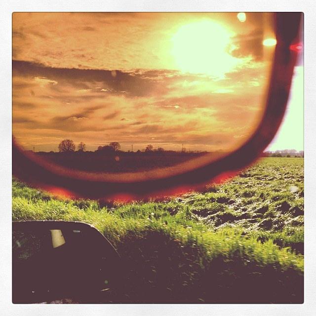 Roos bekijkt alles door een professionele bril